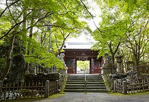 神峯山寺の画像