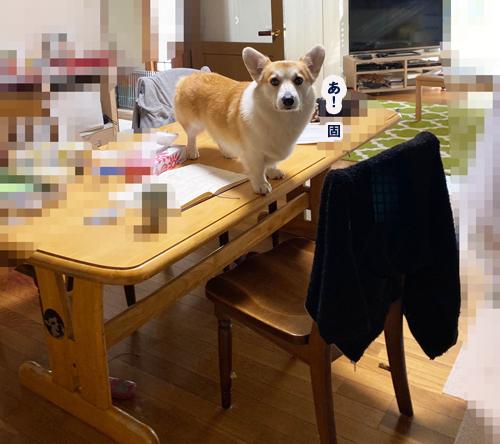 テーブルにのった