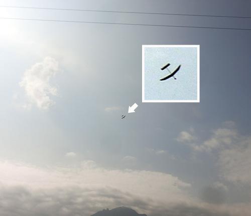 7日自由機01
