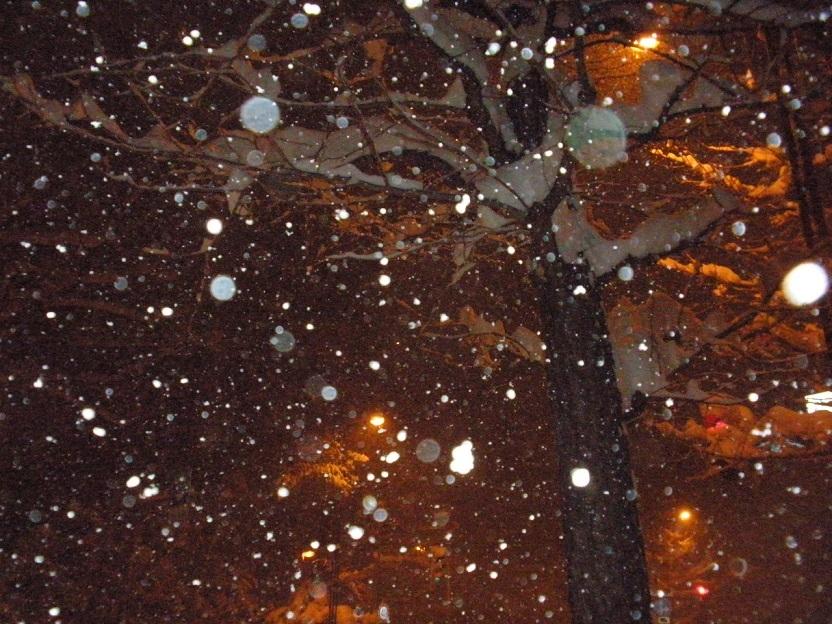 雪夜空200205