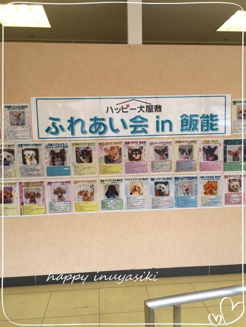 mini20192019 9 8 飯能まるひろふれあい会_190909_0029