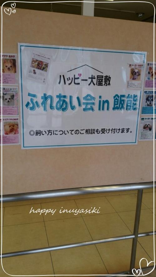 mini20192019 9 8 飯能まるひろふれあい会_190909_0121