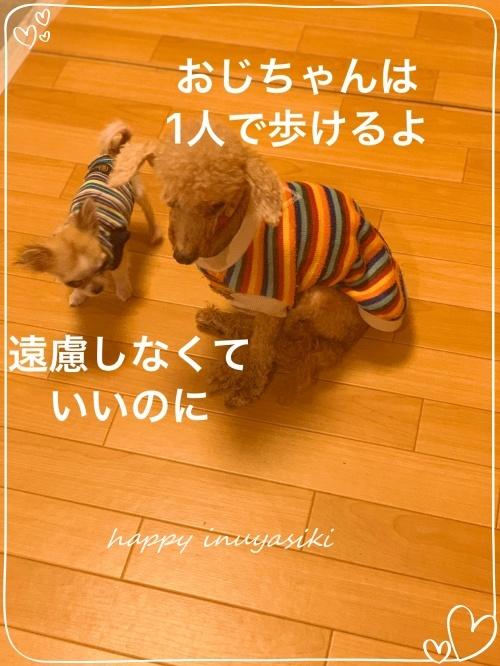 mini2019-1IMG_1288.jpg