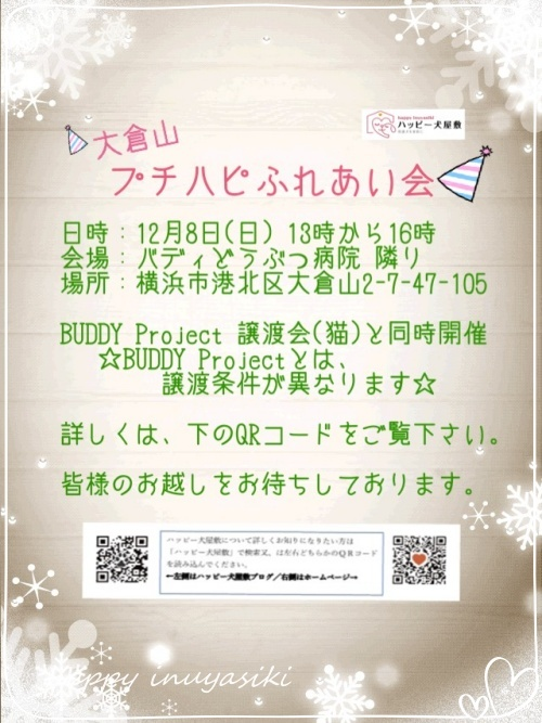 mini2019-1S__22028327.jpg