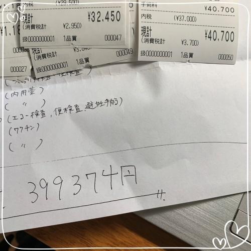 mini2019-1S__6005255.jpg