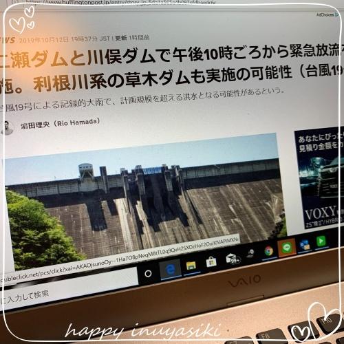 mini2019IMG_9504(1).jpg
