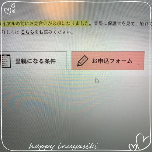 mini2019IMG_9588(1).jpg