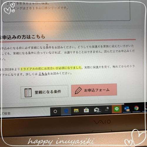 mini2019IMG_9589(1).jpg