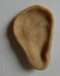 粘土で耳マネキンを作る (3)