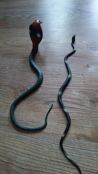 ヘビがきた (1)