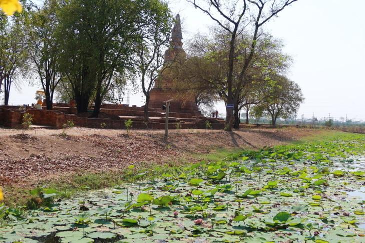 Wat Phra Ngarm (8)