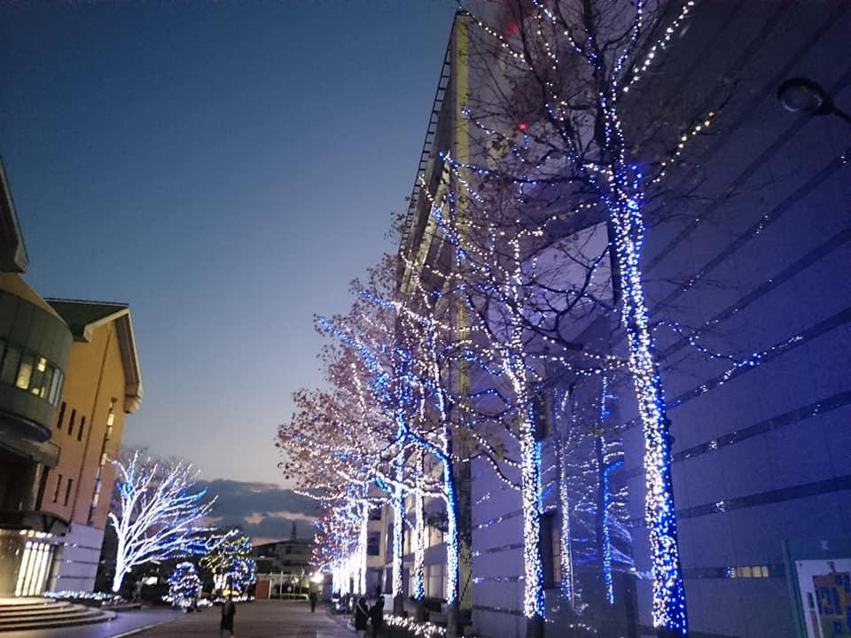 徳島文理大学 徳島のイルミネーション LED 人気スポット オススメ