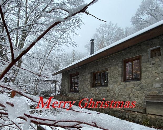 重たい雪が降った石積みの家