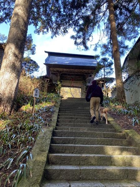 安楽寺への石段