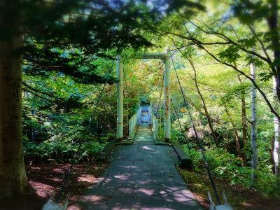 2019年9月旭山記念公園7