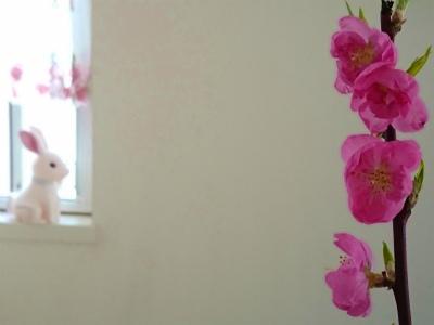 桃の花 窓喚起