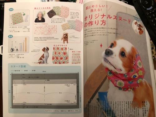 IMG_4544 犬
