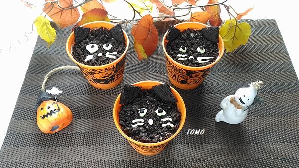 黒猫ミルクプリン2