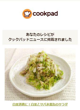 クックパッドニュース「白菜とサバ水煮缶のサラダ」