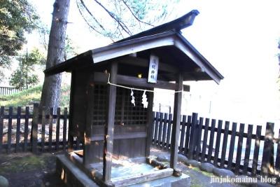 浅間神社  杉並区善福寺4