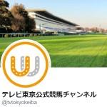 テレビ東京公式競馬チャンネル(@tvtokyokeiba)