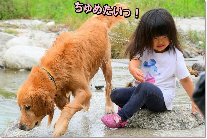 DSC_9598ちゅめたい!
