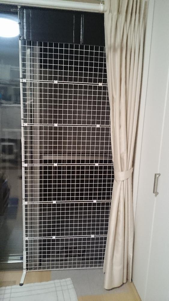掃き出し窓(出入りしない窓)シン宅