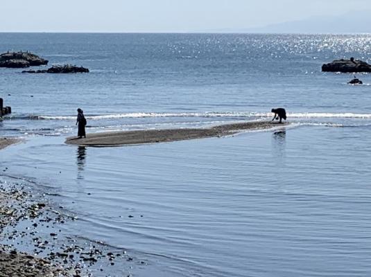 一色海岸18
