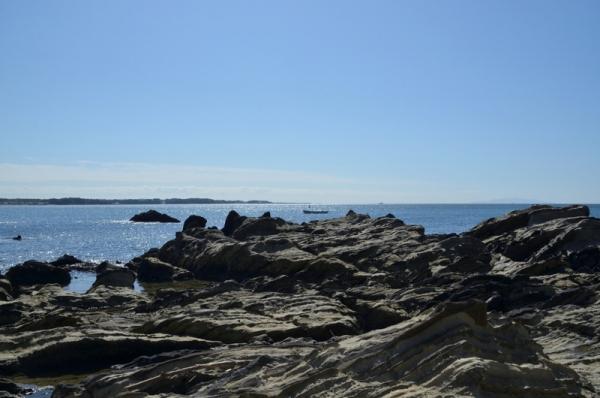 荒崎海岸12