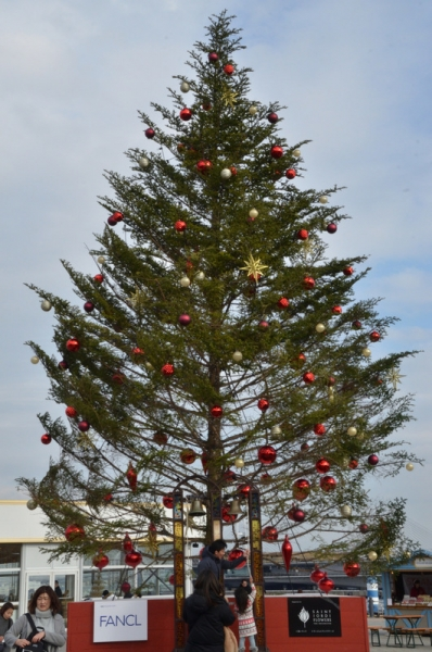赤レンガ クリスマス7