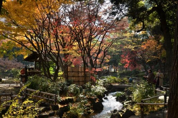 横浜公園2019 2