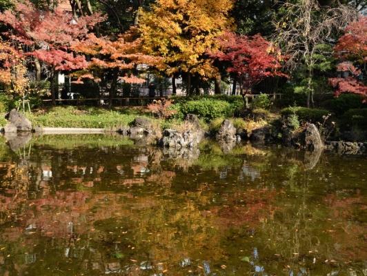 横浜公園2019 10
