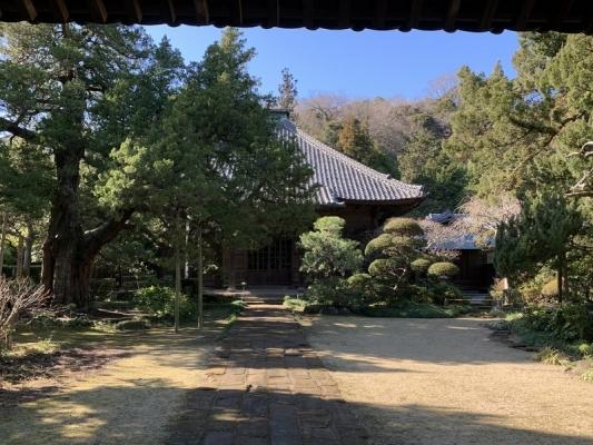 寿福寺2020 6