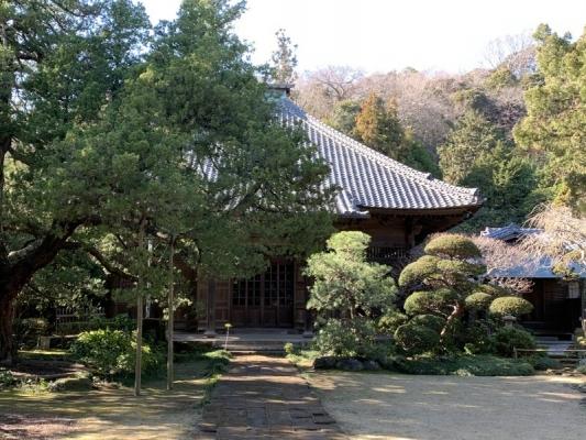 寿福寺2020 9