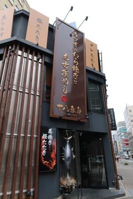 名古屋のカツオ