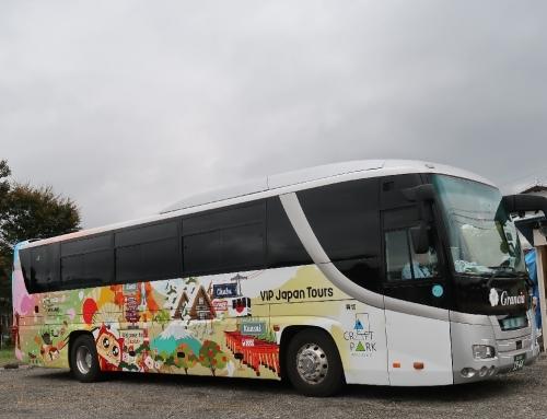ネコの観光バス