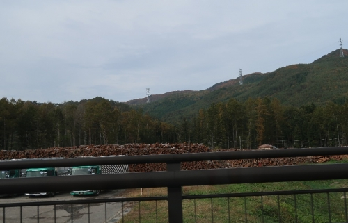 会津 木材