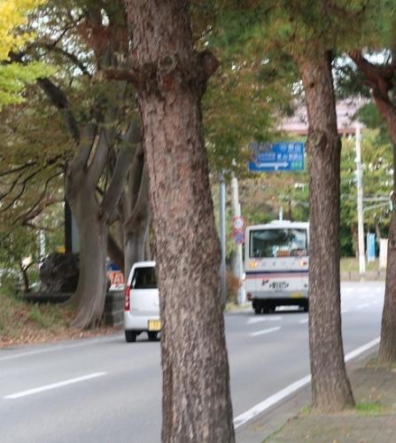 鶴ヶ城(会津若松城))会津バス