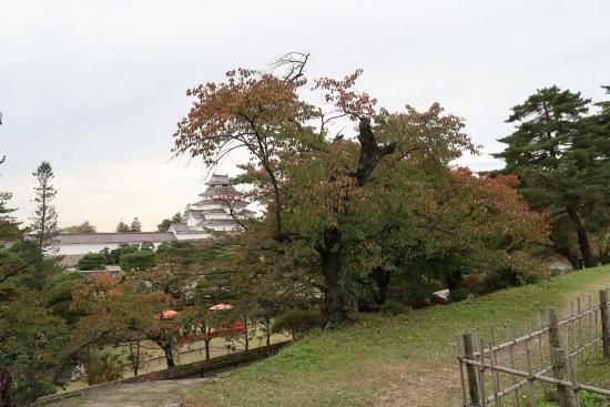 鶴ヶ城(会津若松城)茶壷櫓跡から天守
