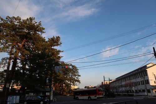 小田原城前 藤棚 箱根登山バス