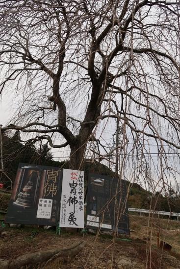 島田 干支
