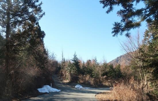 長野県飯田市 国道152号線 雪