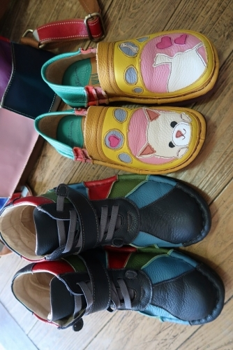 ワンコの靴