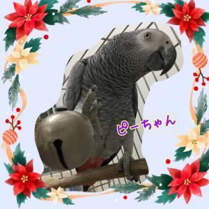 image1_(175)_convert_20191221154842.jpeg