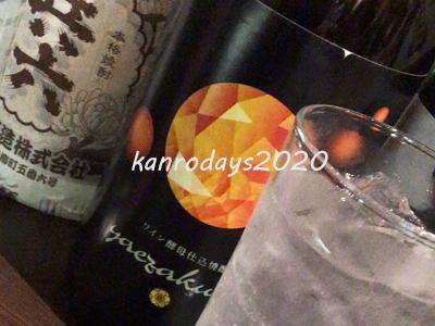 20200319_ヤエザクラオレンジ