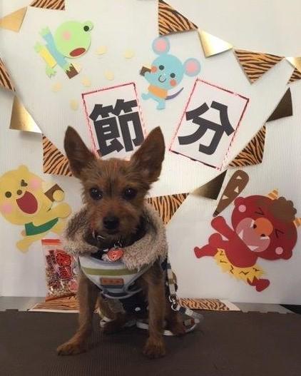 マフィンくん (2)