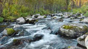 5411-340川の流れ