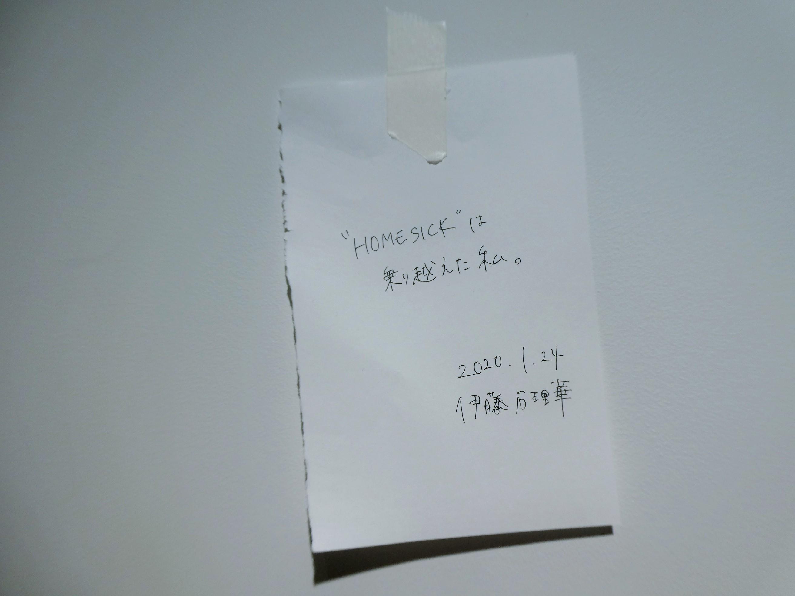 P1540947.jpg