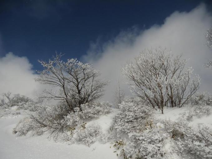 振り返り、山頂部の霧氷