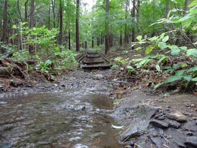 登山道を横切る水の流れ